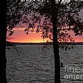 Sunset by Judi Deziel