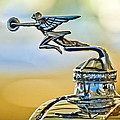 1929 Packard Hood Ornament by Jill Reger