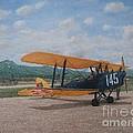 1930's Tiger Moth Aircraft - Aeronave Forca Aerea Portuguesa by Carlos De Vasconcelos Tavares