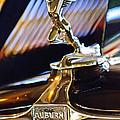 1932 Auburn V-12 Speedster Hood Ornament by Jill Reger