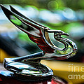 1934 Chevrolet Flying Eagle Hood Ornament - 2 by Paul Ward