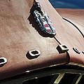 1952 Dodge Hood Emblem by Jill Reger