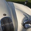 1954 Jaguar Xk 120 Se Roadster by Jill Reger