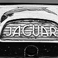 1963 Jaguar Back Up Light by Paul Ward