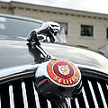 1963 Jaguar Emblem by Paul Ward