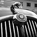 1963 Jaguar Front Grill In Balck And White by Paul Ward
