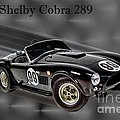 1963 Shelby Cobra 289 by Tommy Anderson