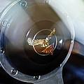 1964 Alvis Te21 Series IIi Drophead Coupe Steering Wheel Emblem by Jill Reger