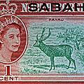 1964 North Borneo Sabah Stamp by Bill Owen