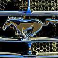 1965 Ford Shelby Mustang Grille Emblem by Jill Reger