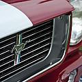 1966 Shelby  Gt 350 Grille Emblem by Jill Reger