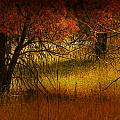 1969 by Peter Holme III