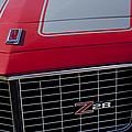 1971 Chevrolet Camaro Grille by Jill Reger