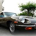 1973 Jaguar Type E by Paul Ward