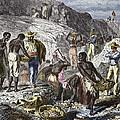 19th-century Diamond Mining, Brazil by Sheila Terry