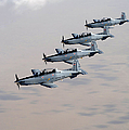 A Formation Of Iraqi Air Force T-6 by Stocktrek Images