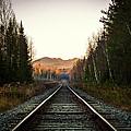 Adirondack Tracks by Travis MacDonald