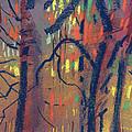Autumn Color by Donald Maier