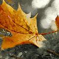 Autumn by Design Windmill