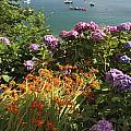Bay Beside Glandore Village In West by Trish Punch