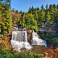 Blackwater Falls Sp by Mary Almond