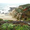 Bodega Bay by Kelly Manning