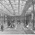 Brighton Aquarium, 1872 by Granger