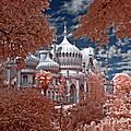 Brighton Pavilion by Steven Cragg