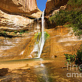 Calf Creek Falls Canyon by Adam Jewell
