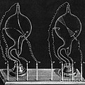 Cathode Ray Tubes by Science Source