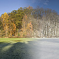 Composite Of Fall And Winter by Ted Kinsman