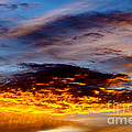 December Sunrise by Thomas R Fletcher
