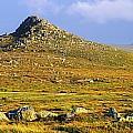 Dingle Peninsula, Co Kerry, Ireland by The Irish Image Collection