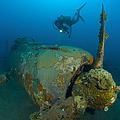 Diver Explores The Wreck by Steve Jones