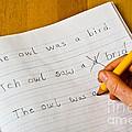 Dyslexia Testing by Photo Researchers, Inc.