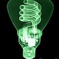 Energy Efficient Light Bulb by Ted Kinsman