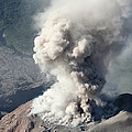 Eruption Of Ash Cloud From Santiaguito by Richard Roscoe
