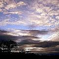 Evening Skies by Katina Cote