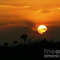 Florida Sunset by Jeanne Andrews