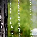 Frozen In Time by Allen Sindlinger