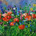 Garden Flowers  by Pol Ledent