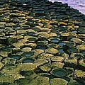 Giants Causeway, Co Antrim, Ireland by The Irish Image Collection