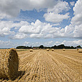 Harvest Time In France by Ian Middleton