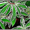Leaves by Anand Swaroop Manchiraju