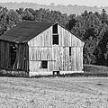 2 Line Barn 15087b by Guy Whiteley