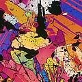 Moon Rock, Transmitted Light Micrograph by Michael W. Davidson - FSU