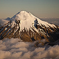 Mount Taranaki Above The Clouds New by Colin Monteath