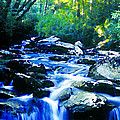 Mountain Stream by David Lee Thompson