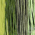 Multi-colored Striped Fabrics by Mats Silvan