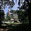 Oakley Plantation by Bourbon  Street